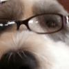 Profile photo of tiapanda